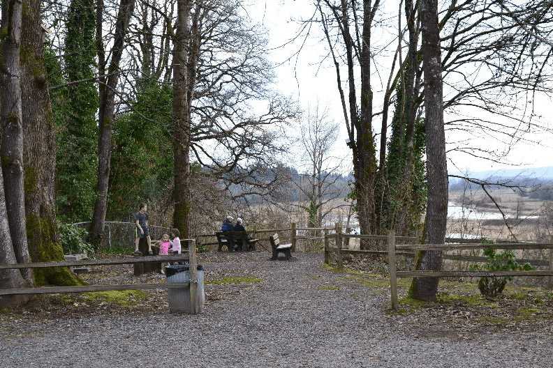 Park trails and bench